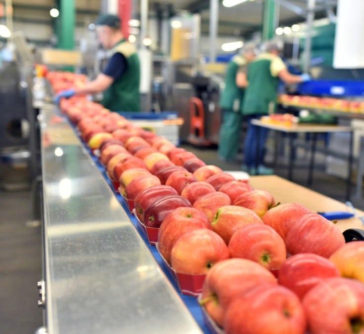 O blockchain será fundamental para a segurança alimentar
