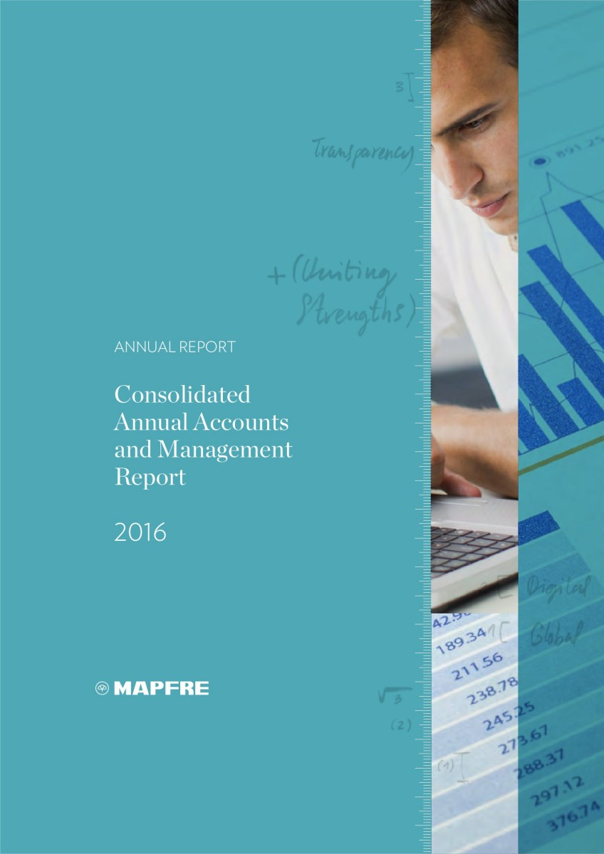 3 CONSOLIDATED ANNUAL ACCOUNTS AND MANAGEMENT REPORT 2016